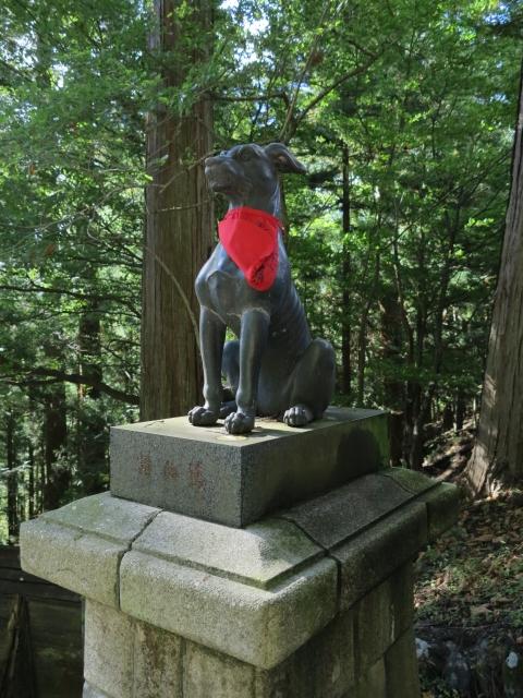 三峯神社 狛犬 狼