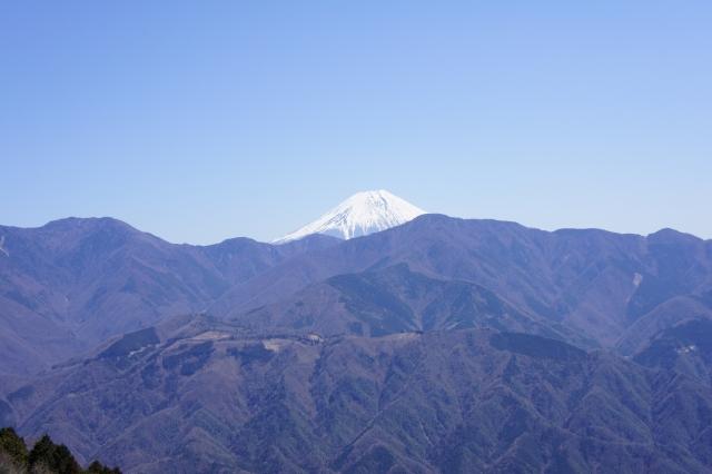 見延山 富士山